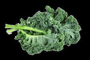 - Health benefits of Kale