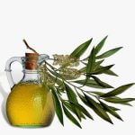 - 8 Healing Oils to Get Rid of Acne Scars